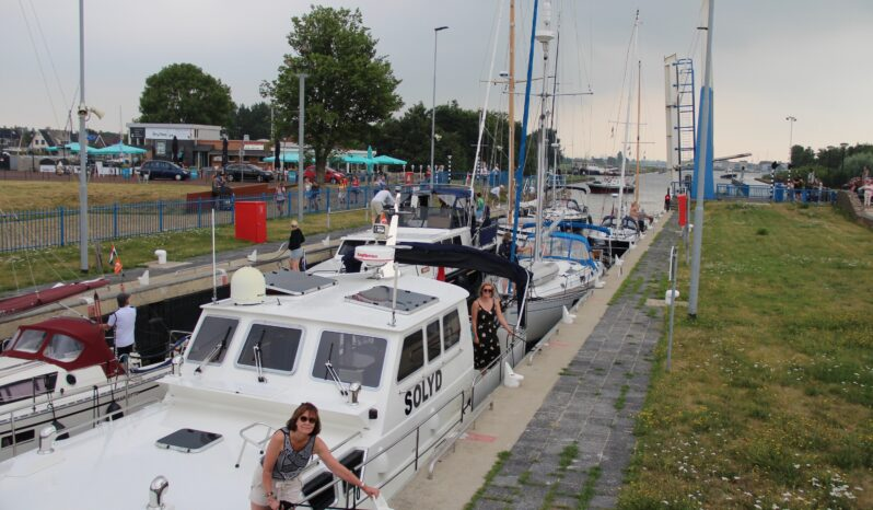 Pilot 44 Solyd voll